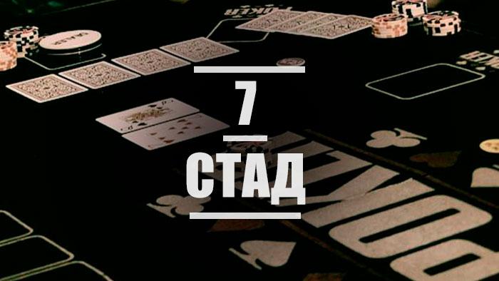 Все о стад-покере